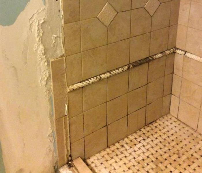 Bathroom Mold Before