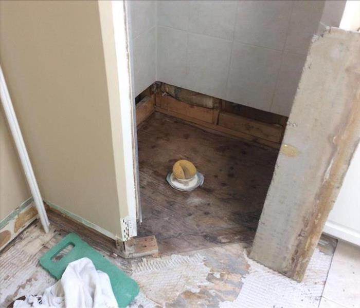 Churchton home toilet leads to Mold Remediation
