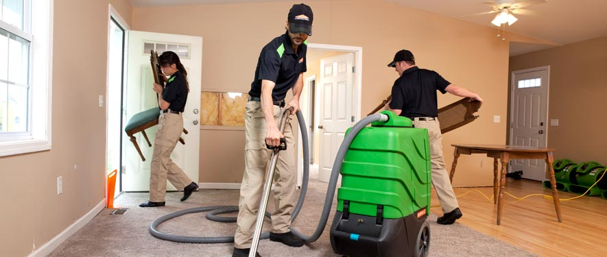 Edgewater, MD cleaning services